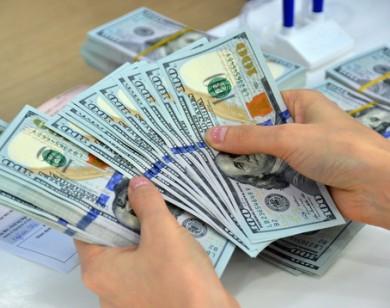 Tỷ giá USD hôm nay 29/8: Đồng USD tăng mạnh