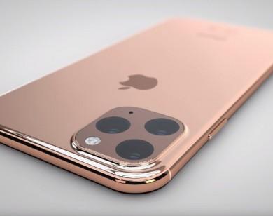 iPhone 11 có giá 100 triệu đồng đã có khách đặt mua trước