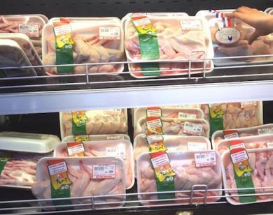Giá gà tại trại chăn nuôi giảm kỷ lục chỉ còn 8.000 đồng/kg