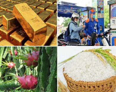 Tiêu dùng trong tuần: Giá vàng, xăng dầu, trái cây giảm mạnh; trong khi giá lúa gạo tăng cao
