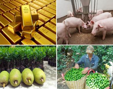 Tiêu dùng trong tuần: Giá vàng và trái cây tăng mạnh, trong khi thịt heo rớt giá thê thảm
