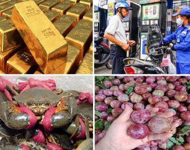 Tiêu dùng trong tuần (từ 12-19/4/2021): Giá vàng tăng mạnh, thực phẩm và trái cây đồng loạt rớt giá