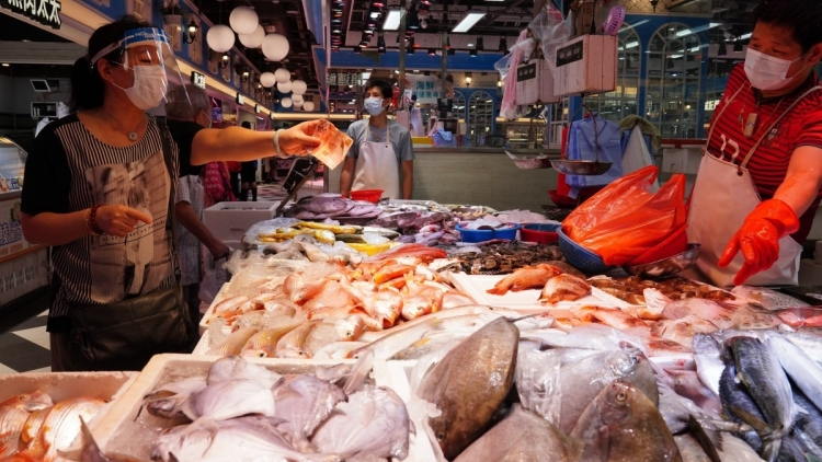Cá nhập khẩu ở Hong Kong nhiễm SARS-CoV-2, Mỹ có xu hướng bệnh nhân Covid-19 trẻ hóa