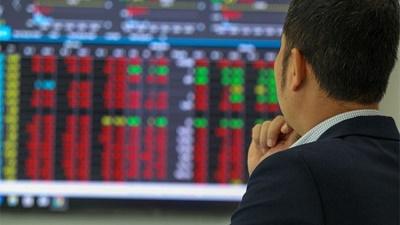 Nhà đầu tư nên tìm kiếm cơ hội ở những cổ phiếu vốn hóa trung bình