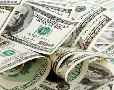 Tỷ giá ngoại tệ ngày 14/10/2021: Đồng USD quay đầu giảm mạnh