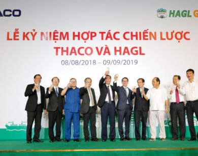 Thaco đã đầu tư tổng cộng 22.194 tỷ đồng trong hợp tác với HAGL