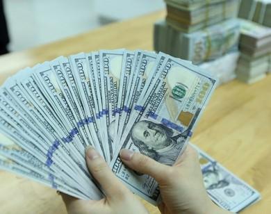 Tỷ giá USD hôm nay 7/11: Đồng USD giảm nhẹ